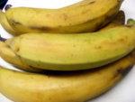 plantain-ripe.jpg